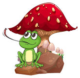 A frog catching a fly near the giant mushroom Stock Images