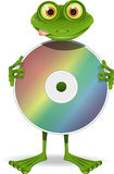 Frog and CD Stock Photography