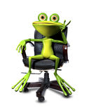 Frog in a chair Royalty Free Stock Photo