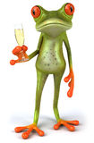Frog and champagne Royalty Free Stock Photos