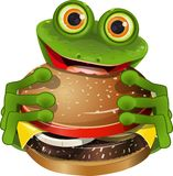 Frog with cheeseburger Royalty Free Stock Photo