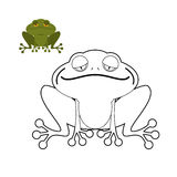 Frog coloring book. Funny amphibious reptile. Animal from swamp. Stock Photos