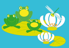 Frog Concert. Three frogs troll songs sitting on a piece of lilies Stock Photo