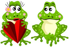Frog couple holding red heart Royalty Free Stock Photo