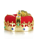 Frog on crown. Frog sitting on crown on white backgroun stock photography