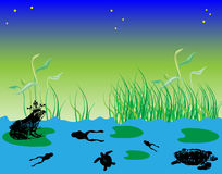 Frog with crown. Abstract colored illustration with frogs and turtles swimming in the water Royalty Free Stock Image
