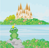 Frog with a crown Royalty Free Stock Photos
