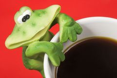Frog and cup of coffee. Frog with a love for coffee Royalty Free Stock Images