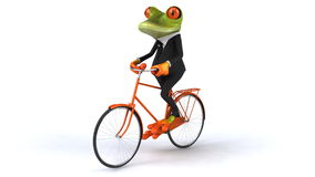 Frog stock video