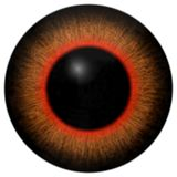 Frog 3d eyeball with orange and red round, big black pupil, on white background, animal eye royalty free illustration
