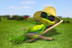 Frog in a deck chair on the grass Stock Image