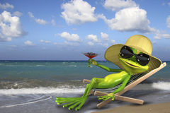 Frog in a deckchair on the beach Royalty Free Stock Images