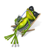Frog in a deckchair Stock Photo