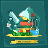 Frog dissection, vector illustration Royalty Free Stock Photo