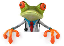 Frog doctor Royalty Free Stock Image