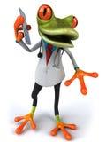 Frog doctor Stock Image