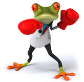 Frog doctor Stock Photos