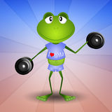Frog doing fitness Stock Images