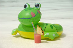 Frog and drink Royalty Free Stock Image