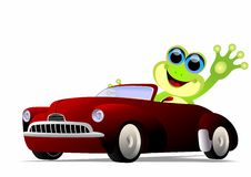 Frog driving. Vector illustration of frog waving while driving a car vector illustration