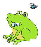 Frog eating fat fly. Another fly flies away. Funny cartoon illustration stock illustration