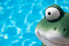 Frog eye view Stock Photos