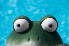 Frog eye view Stock Photography