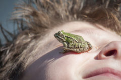 Frog on face Royalty Free Stock Photo
