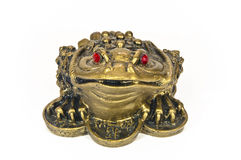 Frog feng shui Royalty Free Stock Image