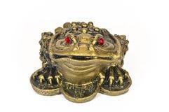 Frog feng shui Royalty Free Stock Image