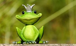Frog, Figure, King, Cute, Funny Royalty Free Stock Photography