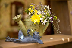 Frog figurine and flowers in a watering can, Provence style, Interior design Stock Image