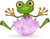 Frog and Flower Royalty Free Stock Photo