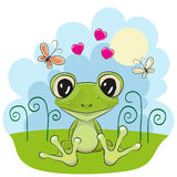 Frog with flowers Royalty Free Stock Photography
