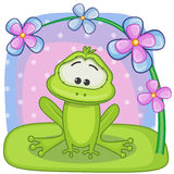 Frog with flowers Royalty Free Stock Photo