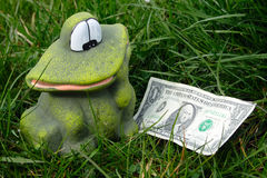 Frog found dollar Royalty Free Stock Photos