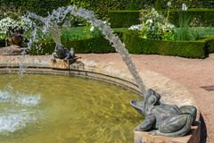 Frog fountain in a white garden, south of France royalty free stock image