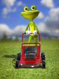 A frog with a frontal mower Stock Photography