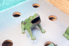 Frog game Royalty Free Stock Image
