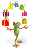 Frog and gifts Stock Photography