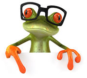 Frog with glasses Stock Photography