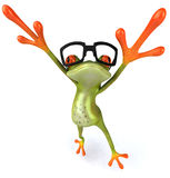 Frog with glasses Royalty Free Stock Photography