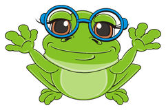 Frog in glasses sit Stock Images
