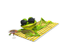 Frog with glasses on a towel Royalty Free Stock Image
