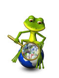Frog on a globe with a magnifying glass Stock Image