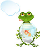 Frog and a goldfish Stock Photos
