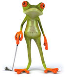Frog and golf Stock Photos