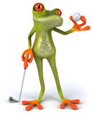 Frog and golf Stock Photography