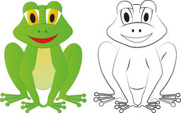 Frog. Green frog and the frog coloring Royalty Free Stock Images