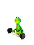 Frog at the gym. Miniature featuring a frog with a barbell isolated on white background Royalty Free Stock Photos
